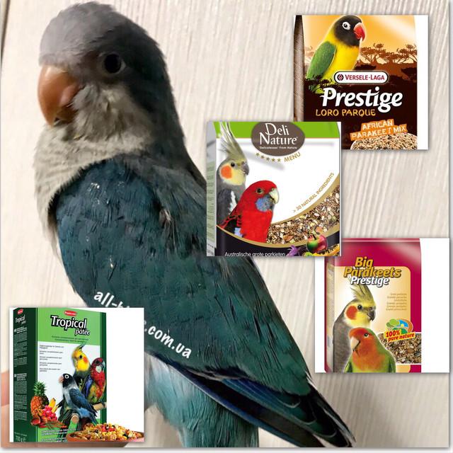 Корм для средних пород попугаев