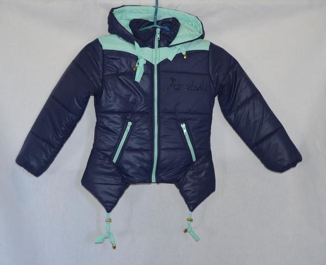 Куртки, пальто, жилетки, спортивные костюмы.